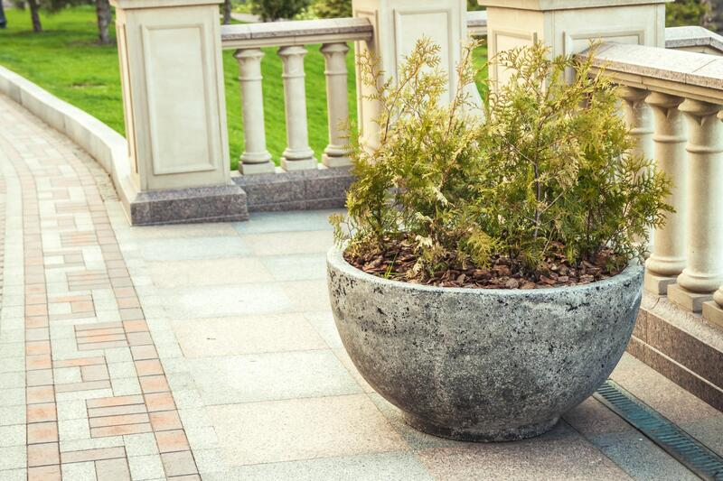 a nice concrete pot